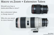 Macro Lens vs Extension Tubes