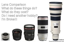 Lens Comparison What Millimeters Do