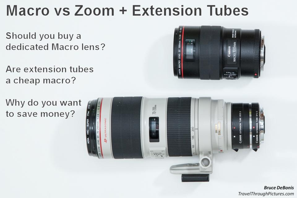 Macro Lens Vs Extension Tubes Travel Through Pictures Com